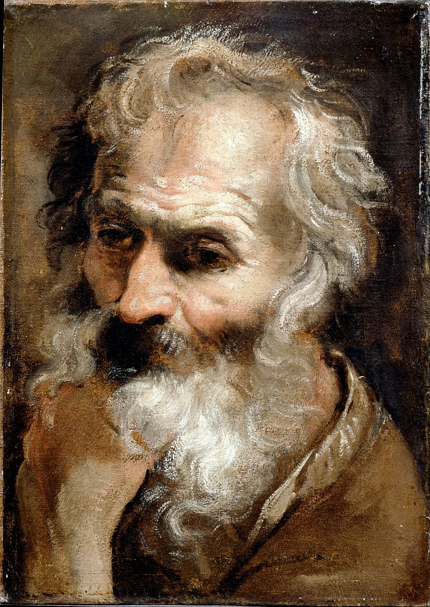 Head of an Old Man by Annibale Carracci