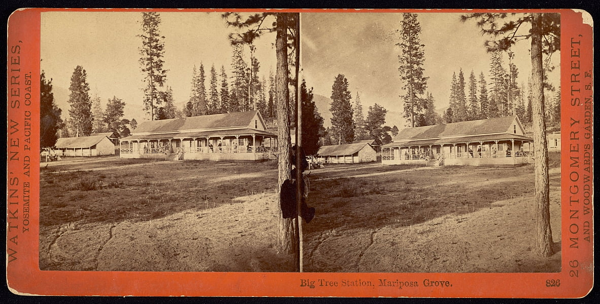 Big Tree Station, Mariposa Grove. von Carleton E. Watkins